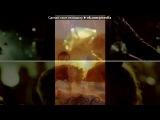 «Со стены Три метра над уровнем неба» под музыку лог дог и баста - Ты-  это безумное желание жить. Picrolla